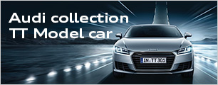 Audi collection TT Model car